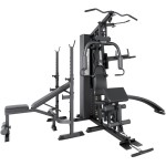 Lifespan GS6 Pro Gym Package