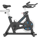 Lifespan SP-460 (M2) Spin Bike